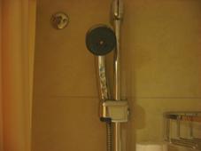 JS 9630 Oasis Shower Head